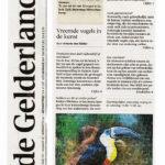 De Gelderlander