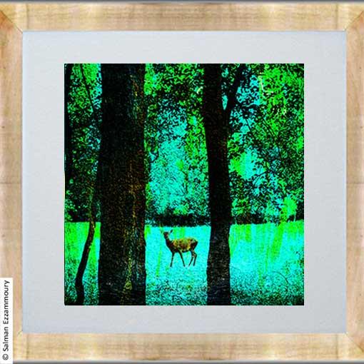 Een Hert in het Bos