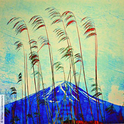 japan fuji berg